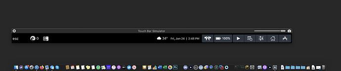 Screen Shot 2020-01-24 at 2.48.08 PM